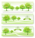 Τρία θερινά εμβλήματα φύσης απεικόνιση αποθεμάτων