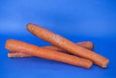 Τρία καρότα στο μπλε υπόβαθρο Στοκ Εικόνα