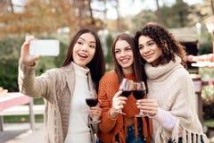 Τρία κορίτσια κάνουν selfie κατά τη διάρκεια ενός πικ-νίκ με τους φίλους στοκ εικόνα με δικαίωμα ελεύθερης χρήσης