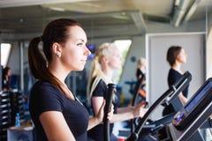 Τρία κορίτσια που τρέχουν treadmills Στοκ εικόνες με δικαίωμα ελεύθερης χρήσης