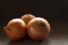 Τρία κρεμμύδια στο μαλακό φως Στοκ Εικόνα