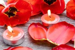 Τρία κόκκινα κεριά καίνε κοντά στις τουλίπες και τα πεσμένα πέταλα Κόκκινο καίγοντας κερί στοκ εικόνες