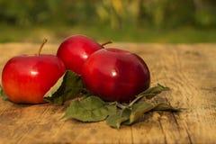 Τρία κόκκινα μήλα με τα φύλλα σε ένα θολωμένο υπόβαθρο Στοκ φωτογραφία με δικαίωμα ελεύθερης χρήσης