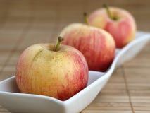 Τρία μήλα σε ένα κύπελλο 01 Στοκ Εικόνες