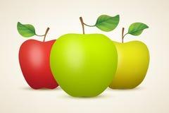 Τρία μήλα Στοκ φωτογραφία με δικαίωμα ελεύθερης χρήσης