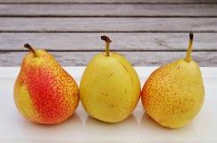Τρία μικρά αχλάδια Forelle σε μια σειρά Στοκ Εικόνα