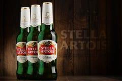 Τρία μπουκάλια της μπύρας της Στέλλα Artois Στοκ φωτογραφία με δικαίωμα ελεύθερης χρήσης