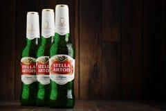Τρία μπουκάλια της μπύρας της Στέλλα Artois Στοκ εικόνες με δικαίωμα ελεύθερης χρήσης