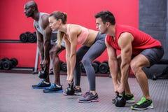 Τρία νέο Bodybuilders που κάνουν στοκ φωτογραφία με δικαίωμα ελεύθερης χρήσης