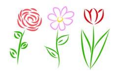 Τρία λουλούδια καθορισμένα Στοκ φωτογραφία με δικαίωμα ελεύθερης χρήσης