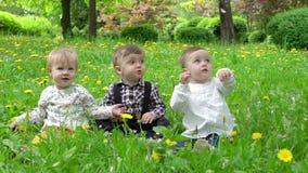 Τρία παιδιά στη χλόη την οποία τα πέταλα αφορούν από τα δέντρα, σε αργή κίνηση απόθεμα βίντεο