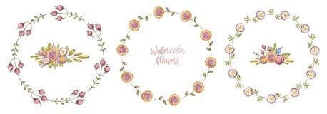 Τρία πλαίσια λουλουδιών watercolor κύκλων, floral κάρτα ελεύθερη απεικόνιση δικαιώματος