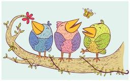 Τρία πουλιά χαλαρώνουν απεικόνιση αποθεμάτων