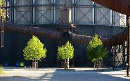 Τρία πράσινα δέντρα αντίθετα της παλαιάς βιομηχανικής περιοχής Dolni oblast Vitkovice στην Οστράβα στοκ εικόνες με δικαίωμα ελεύθερης χρήσης