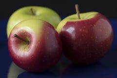 Τρία πράσινα και κόκκινα μήλα καβουριών Στοκ εικόνες με δικαίωμα ελεύθερης χρήσης