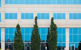 Τρία πράσινα δέντρα από τα μπλε παράθυρα Στοκ φωτογραφία με δικαίωμα ελεύθερης χρήσης