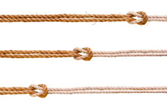 Τρία σχοινιά με το σύνολο κόμβων σκοπέλων Στοκ φωτογραφία με δικαίωμα ελεύθερης χρήσης