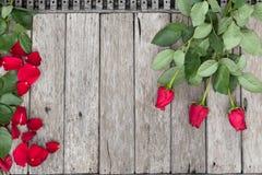 Τρία τριαντάφυλλα και ροδαλός-πέταλα στο ξύλινο υπόβαθρο Στοκ Εικόνα