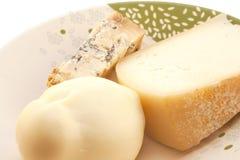 Τρία τυριά στο πιάτο Στοκ Εικόνα