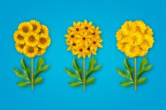 Τρία φανταχτερά λουλούδια σε ένα φωτεινό μπλε υπόβαθρο Η σύνθεση των κίτρινων ηλίανθων, Zinnia και rudbecky Αντικείμενο τέχνης στοκ φωτογραφία με δικαίωμα ελεύθερης χρήσης