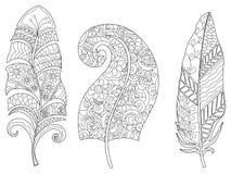 Τρία φτερά που χρωματίζουν το ράστερ για τους ενηλίκους Στοκ Εικόνες