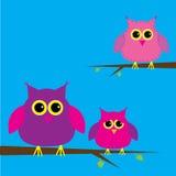 Τρία χαριτωμένα κουκουβάγιες και σύννεφο. Κάρτα. απεικόνιση αποθεμάτων