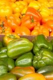 Τρία χρώματα των πιπεριών κουδουνιών Στοκ εικόνα με δικαίωμα ελεύθερης χρήσης