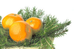 Τρία ώριμα juicy πορτοκαλιά tangerines στο καλάθι στο πράσινο TR Στοκ Εικόνες