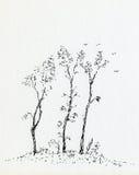 τρία δέντρα Στοκ Φωτογραφίες