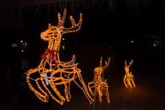 Τρία deers στο νέο τοπίο έτους (Χριστούγεννα) Στοκ εικόνες με δικαίωμα ελεύθερης χρήσης