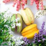 Τρία macarons στον πίνακα γύρω από τα λουλούδια, την ατμόσφαιρα του ειδυλλίου και την τρυφερότητα, ημέρα του βαλεντίνου, ημέρα τη στοκ φωτογραφία με δικαίωμα ελεύθερης χρήσης