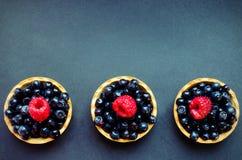 Τρία tarts μούρων Στοκ Εικόνα