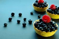 Τρία tarts μούρων Στοκ Εικόνες