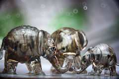 Τρίο των ειδωλίων ελεφάντων γυαλιού Στοκ Φωτογραφία