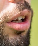 Τρίχα ενός ατόμου με μια γενειάδα και mustache Στοκ εικόνες με δικαίωμα ελεύθερης χρήσης