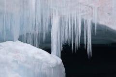 τρίχωμα παγωμένο Στοκ φωτογραφίες με δικαίωμα ελεύθερης χρήσης