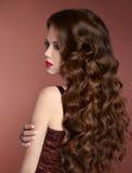 τρίχωμα υγιές Κυματιστό hairstyle Πορτρέτο μόδας κοριτσιών ομορφιάς beaujolais Στοκ Εικόνες