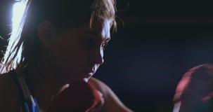 Τραίνα τα όμορφα γυναικών μπόξερ σε μια σκοτεινή γυμναστική και επιλύουν τις διατρήσεις σε σε αργή κίνηση Πλάγια όψη steadicam πυ απόθεμα βίντεο