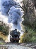 Τραίνο ατμού Στοκ Φωτογραφία