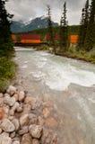 Τραίνο σε Banff Στοκ Εικόνα