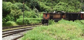 Τραίνο σε kandy Στοκ Εικόνες