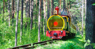 Τραίνο στο θερινό δάσος Στοκ Εικόνες