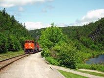 τραίνο φαραγγιών agawa Στοκ Εικόνες