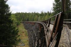 Τραίνο Histroric tressle Στοκ Εικόνα