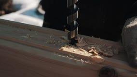 Τραβώντας borer έξω τη μεγάλη τρύπα στον ξύλινο φραγμό που δημιουργεί το πριονίδι έξω το χειμώνα απόθεμα βίντεο