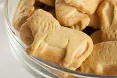 Τραγανά μπισκότα κροτίδων λεμονιών ζωικά Στοκ εικόνες με δικαίωμα ελεύθερης χρήσης