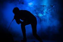 Τραγουδιστής στη συναυλία στοκ εικόνες