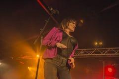 Τραγούδι αρσενικών ελαφιών της Beth Στοκ Εικόνες