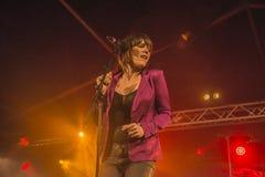 Τραγούδι αρσενικών ελαφιών της Beth Στοκ εικόνα με δικαίωμα ελεύθερης χρήσης