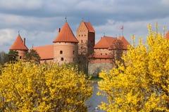 Τρακάι Castle στην άνθιση Στοκ Φωτογραφίες